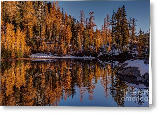 Autumn Reflected Greeting Card by Mike Reid
