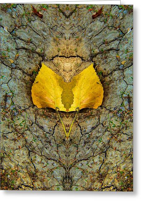 Autumn Reflections Greeting Card by Dan Sproul
