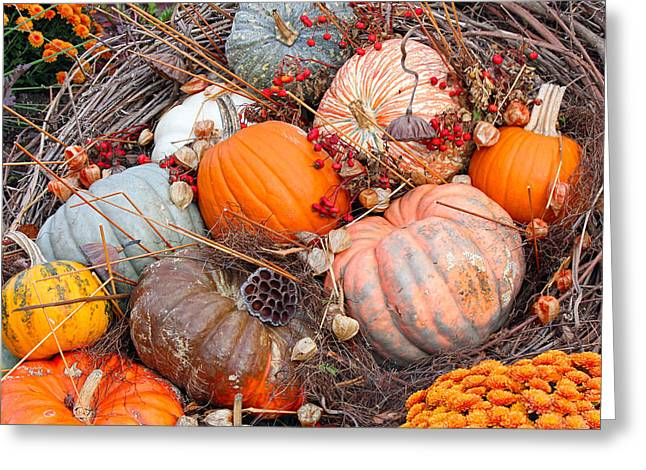 Autumn Scene Greeting Card