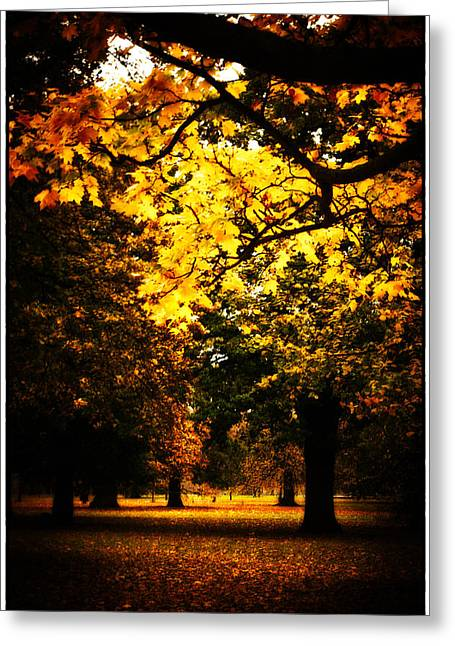 Autumnal Walks Greeting Card by Lenny Carter