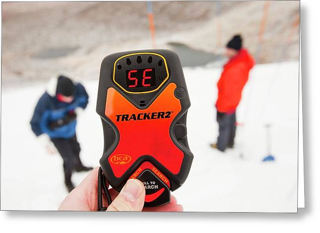 Avalanche Transceivers Greeting Card by Ashley Cooper