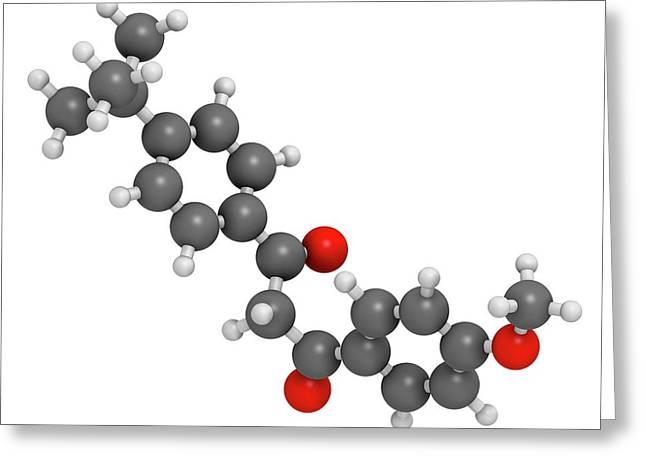 Avobenzone Sunscreen Molecule Greeting Card