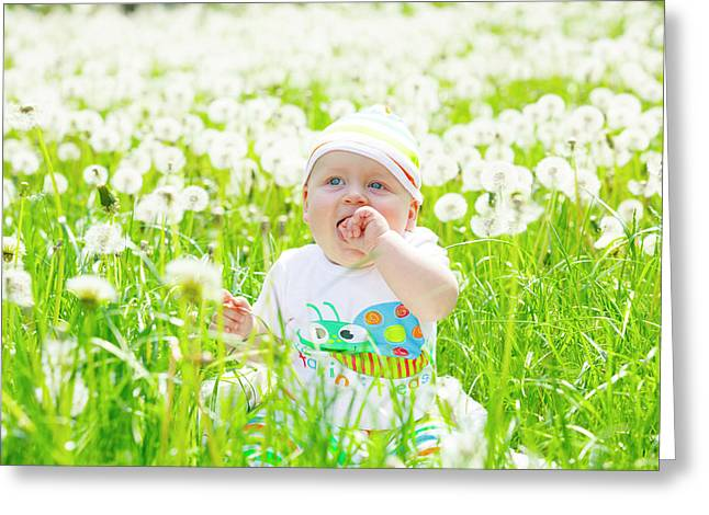 Baby Boy With Dandelions Greeting Card by Wladimir Bulgar