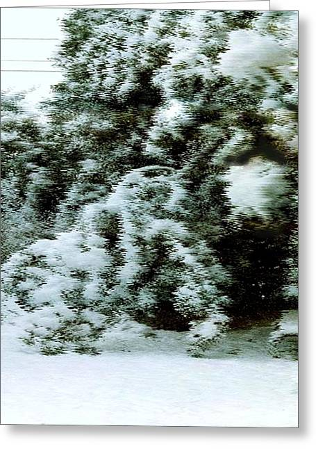 Backyard Snow Greeting Card by Elaine Williams