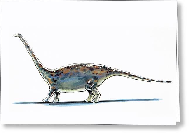 Barapasaurus Dinosaur Greeting Card
