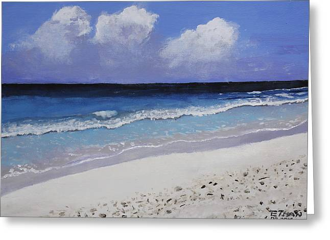Barbados Beach Greeting Card by Ethan Altshuler