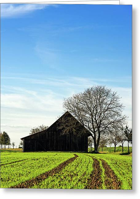 Barn And Green Agricultural Field Greeting Card