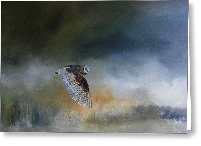 Barn Owl In Flight Greeting Card by Andy Davis