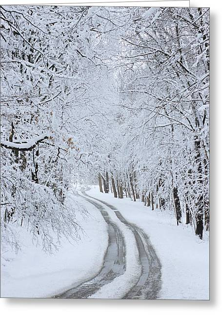 Basswood Drive Greeting Card
