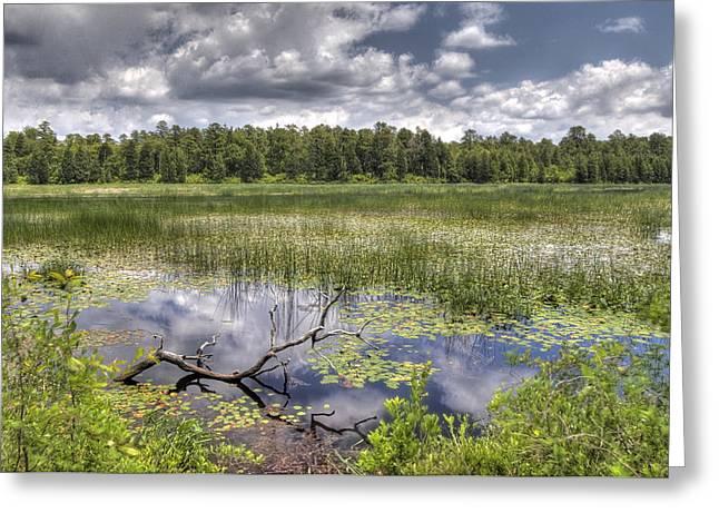 Batsto Lake In Spring Greeting Card