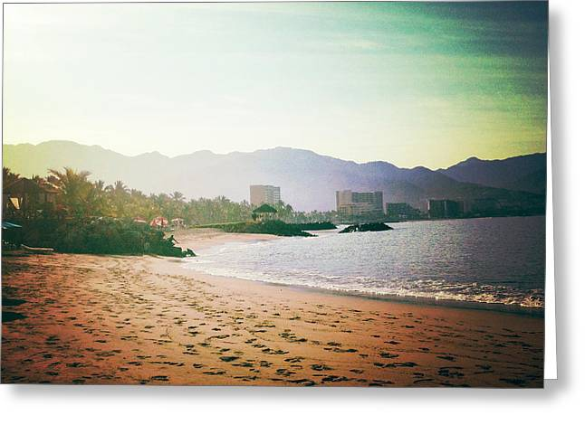 Beach At Dawn Greeting Card by Natasha Marco