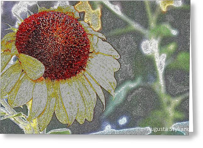 Beautiful Sunflower Greeting Card by Augusta Stylianou