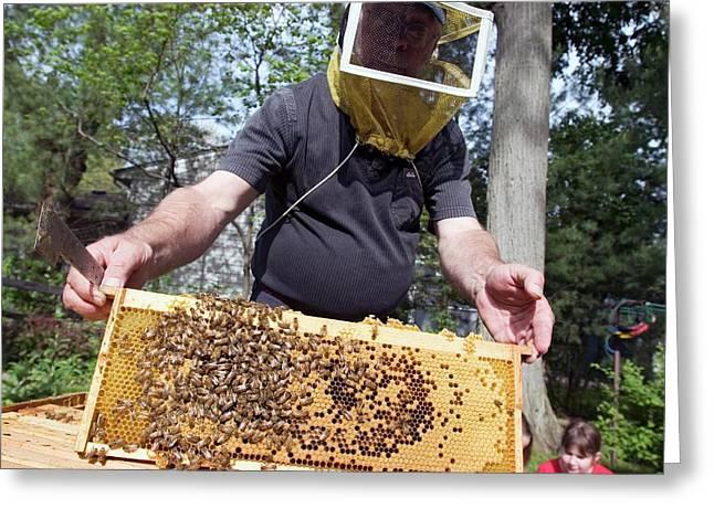 Beekeeping Class Greeting Card