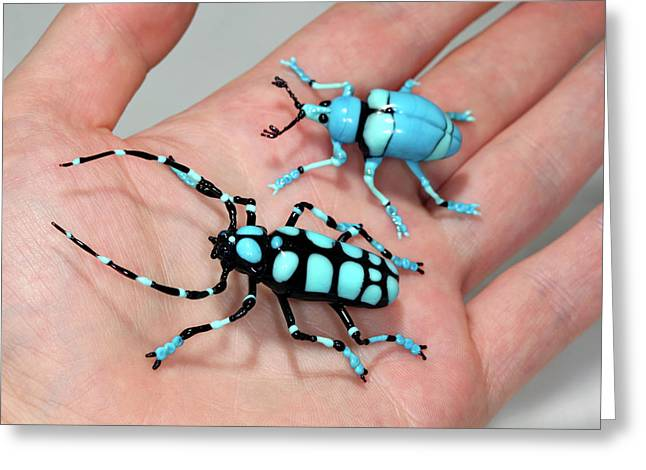 Beetles Greeting Card by Tomasz Litwin