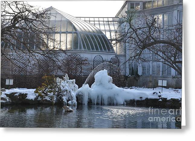 Belle Isle Conservatory Pond 2 Greeting Card