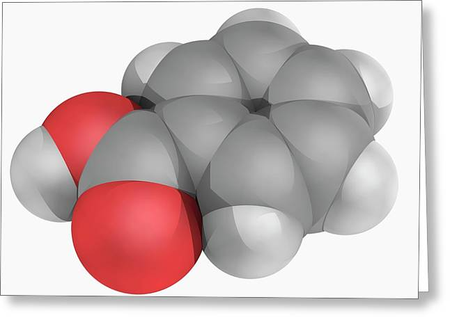 Benzoic Acid Molecule Greeting Card by Laguna Design/science Photo Library