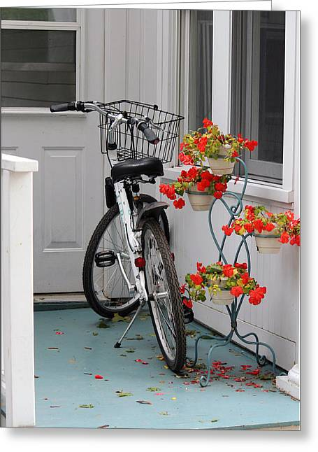 Bicycles And Geraniums Greeting Card