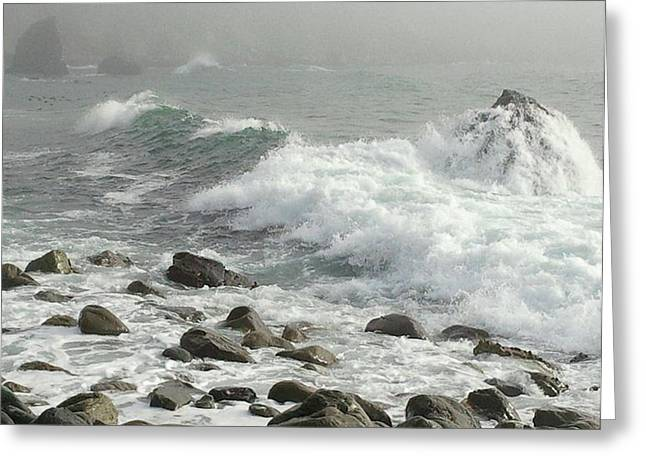 Big Sur Greeting Card by Justin Moranville