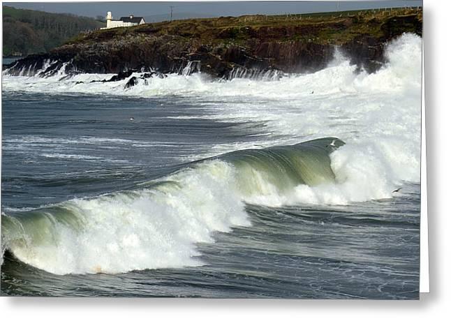 Big Swell Greeting Card by Barbara Walsh
