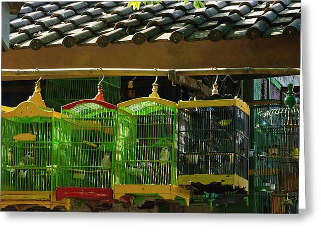 Bird Cages At Ngasem Traditional Bird Greeting Card by Keren Su