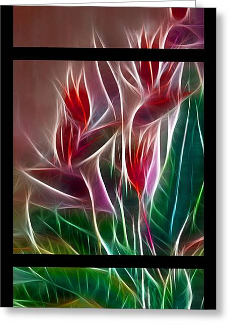 Bird Of Paradise Fractal Greeting Card by Peter Piatt