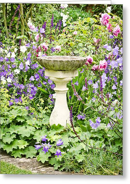 Birdbath Greeting Card by Tom Gowanlock