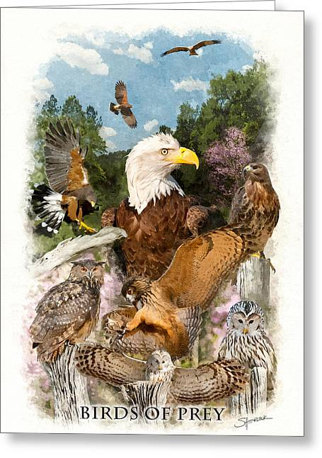 Birds Of Prey Greeting Card