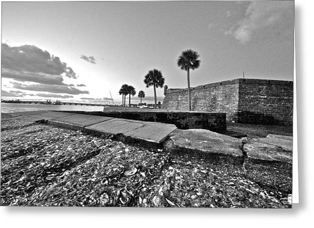 Black And White Castillo De San Marcos View 5 Greeting Card