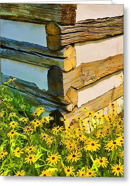 Greeting Card featuring the photograph Black-eyed Susans by Dana Sohr