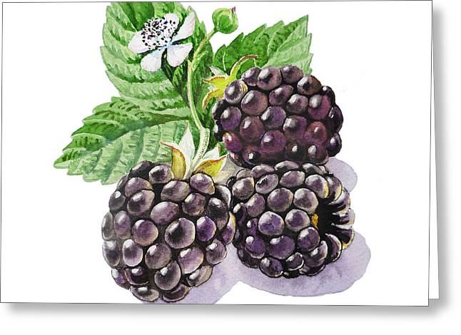 Artz Vitamins Series The Blackberries Greeting Card by Irina Sztukowski