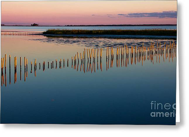Blackwater Sunset Greeting Card