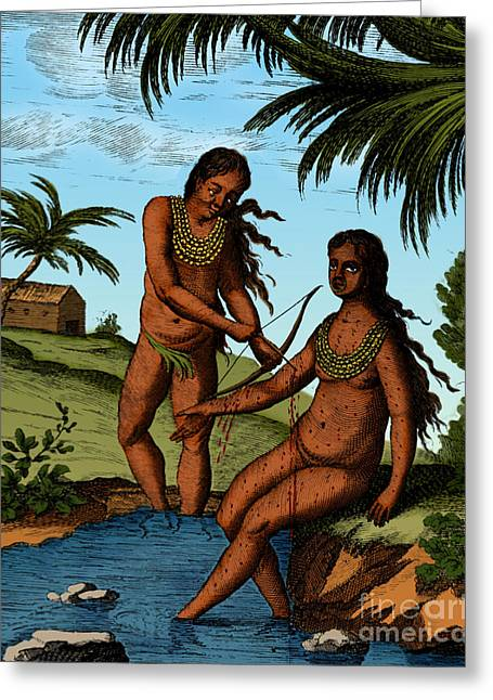 Bloodletting Native Central American Greeting Card by Science Source