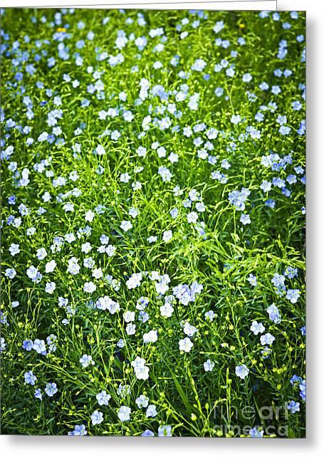 Blooming Flax  Greeting Card by Elena Elisseeva