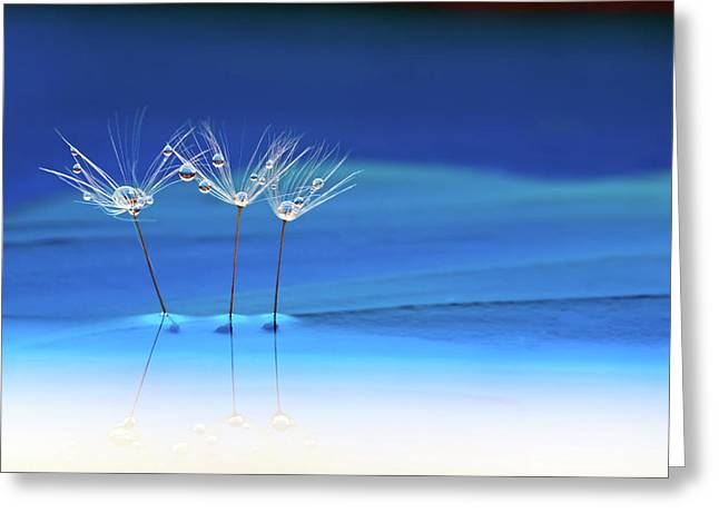 Blue Landscape Greeting Card