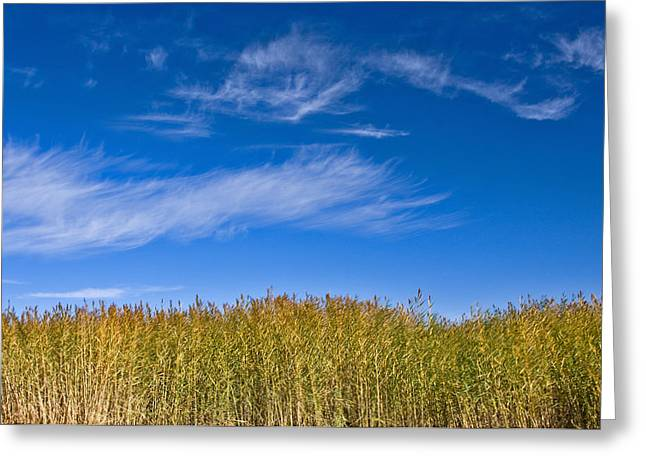 Blue Sky Greeting Card by Jason KS Leung