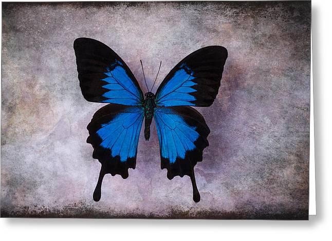 Blue Wings Greeting Card by Garry Gay