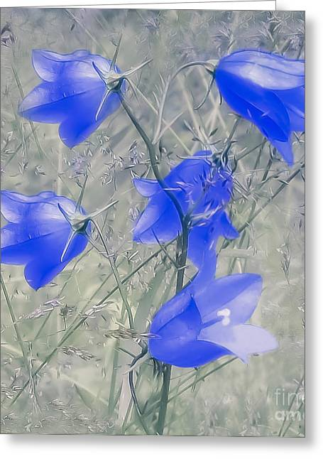 Bluebells Greeting Card by Sylvia  Niklasson