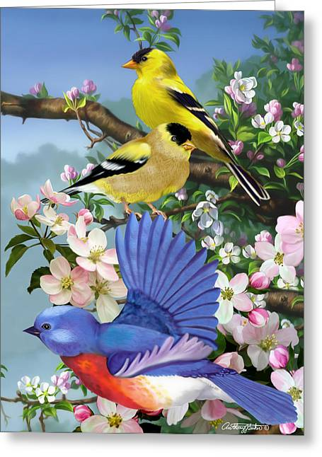 Bluebird And Goldfinch Greeting Card