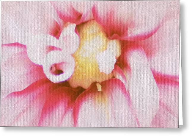 Blushing Greeting Card by Darren Fisher