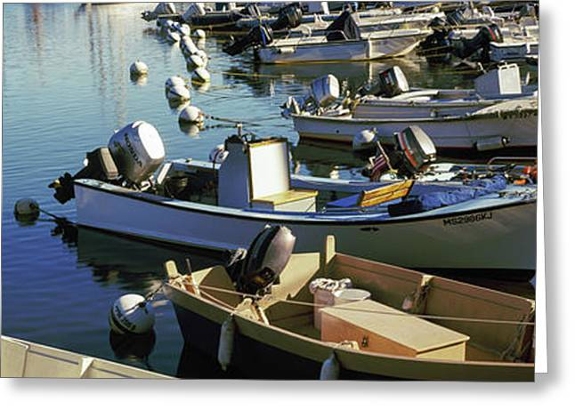 Boats At A Harbor, Provincetown, Cape Greeting Card