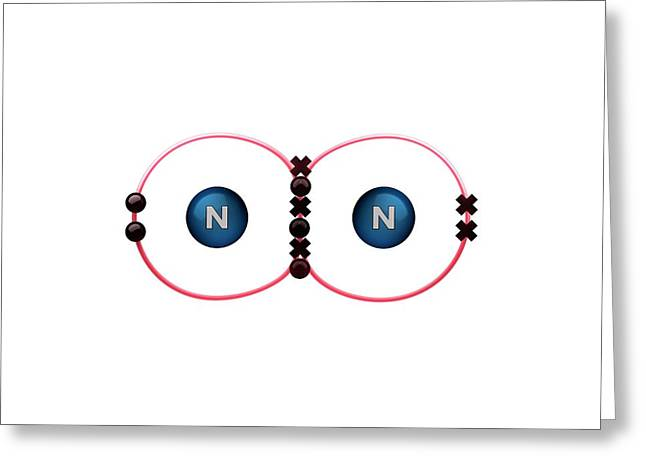 Bond Formation In Nitrogen Molecule Greeting Card by Animate4.com/science Photo Libary