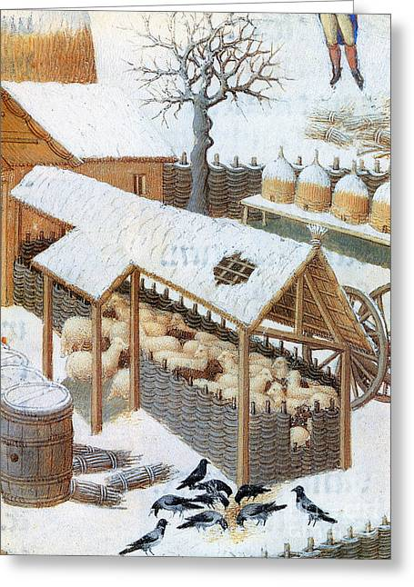 Book Of Hours: February Greeting Card by Granger