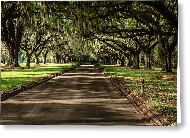 Greeting Card featuring the photograph Boone Plantation Road by John Johnson
