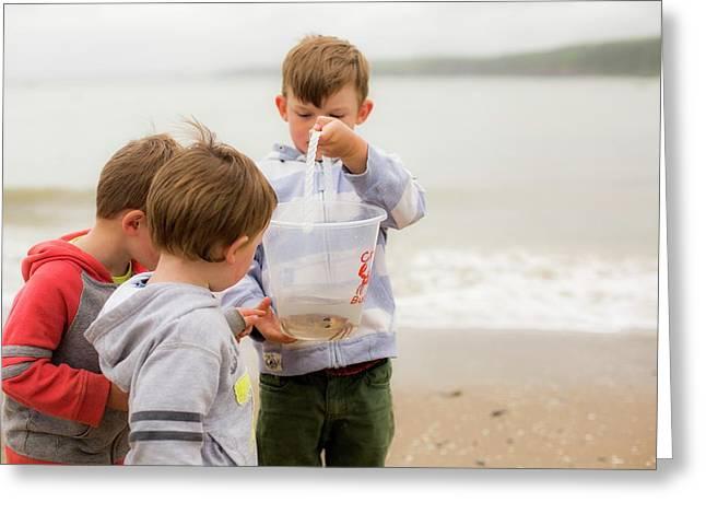 Boys Holding Crab Greeting Card by Samuel Ashfield