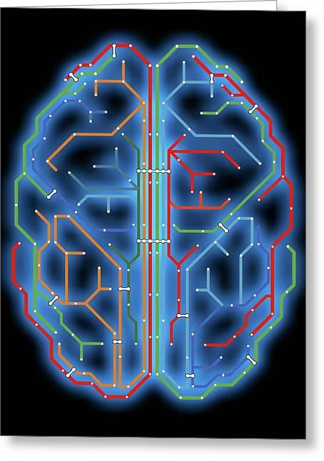 Brain Greeting Card by Alfred Pasieka