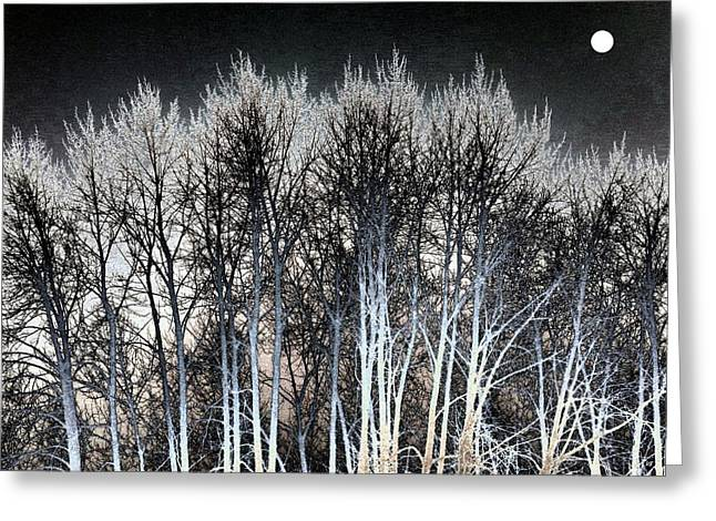 Bright Winter Moon Greeting Card by Will Borden