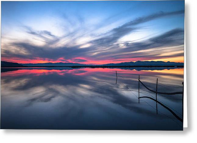 Brighter Horizons Greeting Card by Darryl Wilkinson