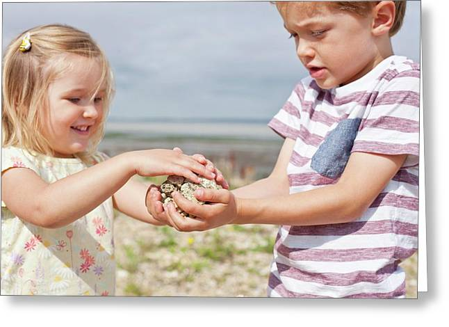 Brother And Sister Collecting Stones Greeting Card by Ian Hooton