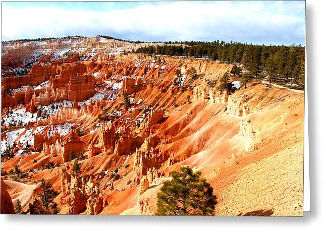 Bryce Canyon Greeting Card by Marti Green