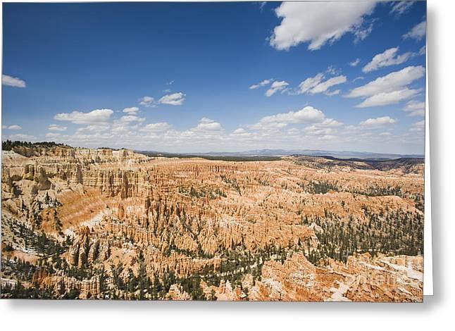 Bryce Canyon National Park Greeting Card by David Davis